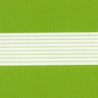 300601_5850 Стандарт св. зеленый